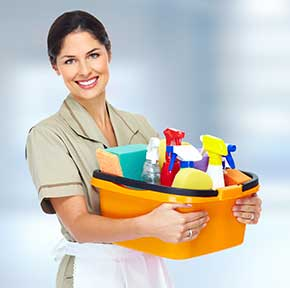 image of cleaning solution, gloves, towel and other cleaning implements