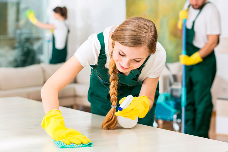 image of house cleaning crew at work